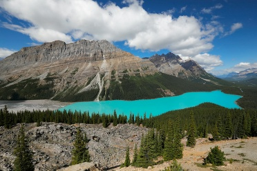 Peyto Lake at Icefields Parkway