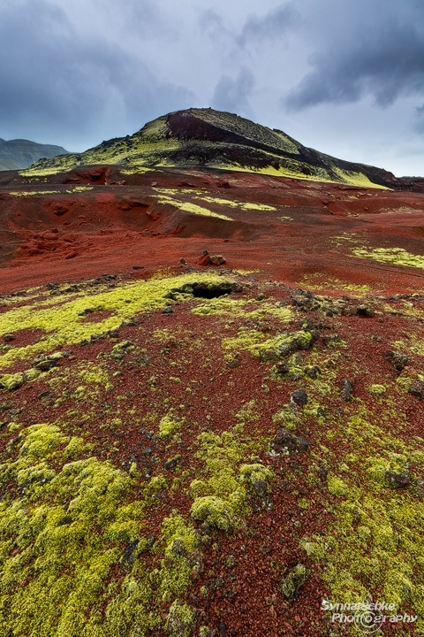 Red lava and moss