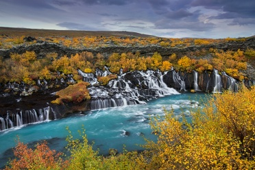 Hraunfossar surrounded by fall foliage