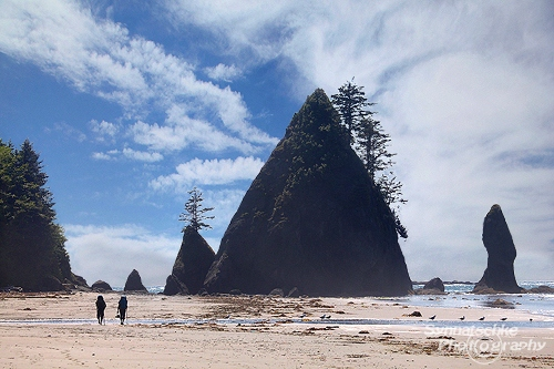 Backpackers at Point of Arches - Olympic National Park