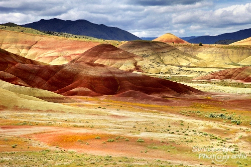 Painted Hills 6