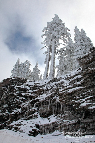 Icicles at Crater Lake NP
