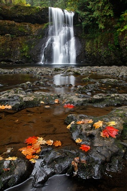 Lower North Falls - Silver Falls State Park