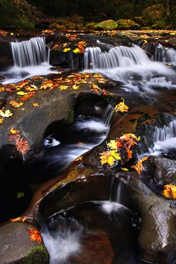Small Cascades Fall