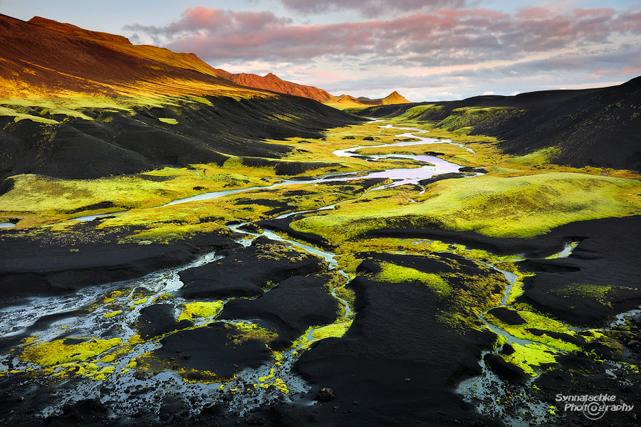Neon Green Moss in the Icelandic Highlands