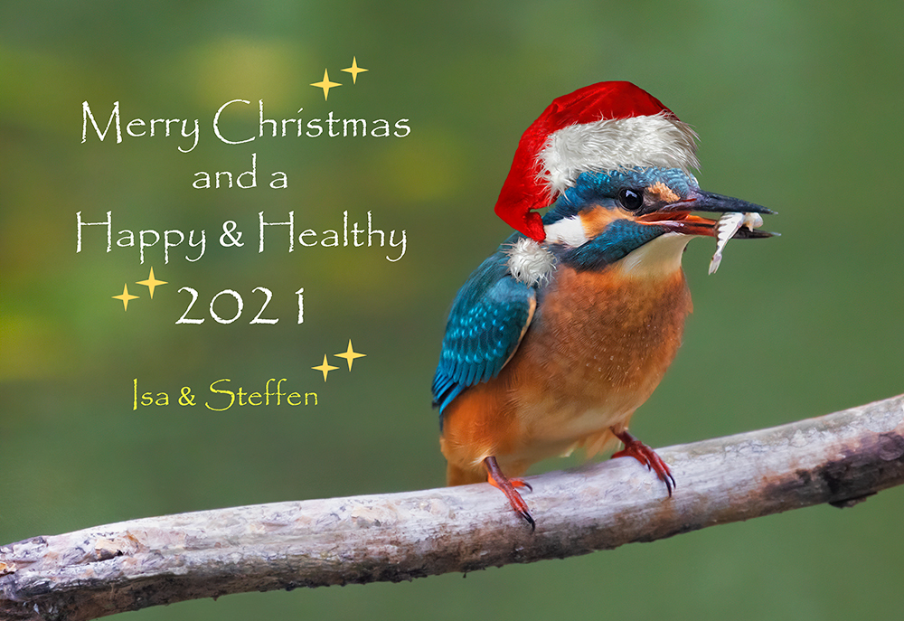 Merry Christmas and a Happy, Healthy 2021